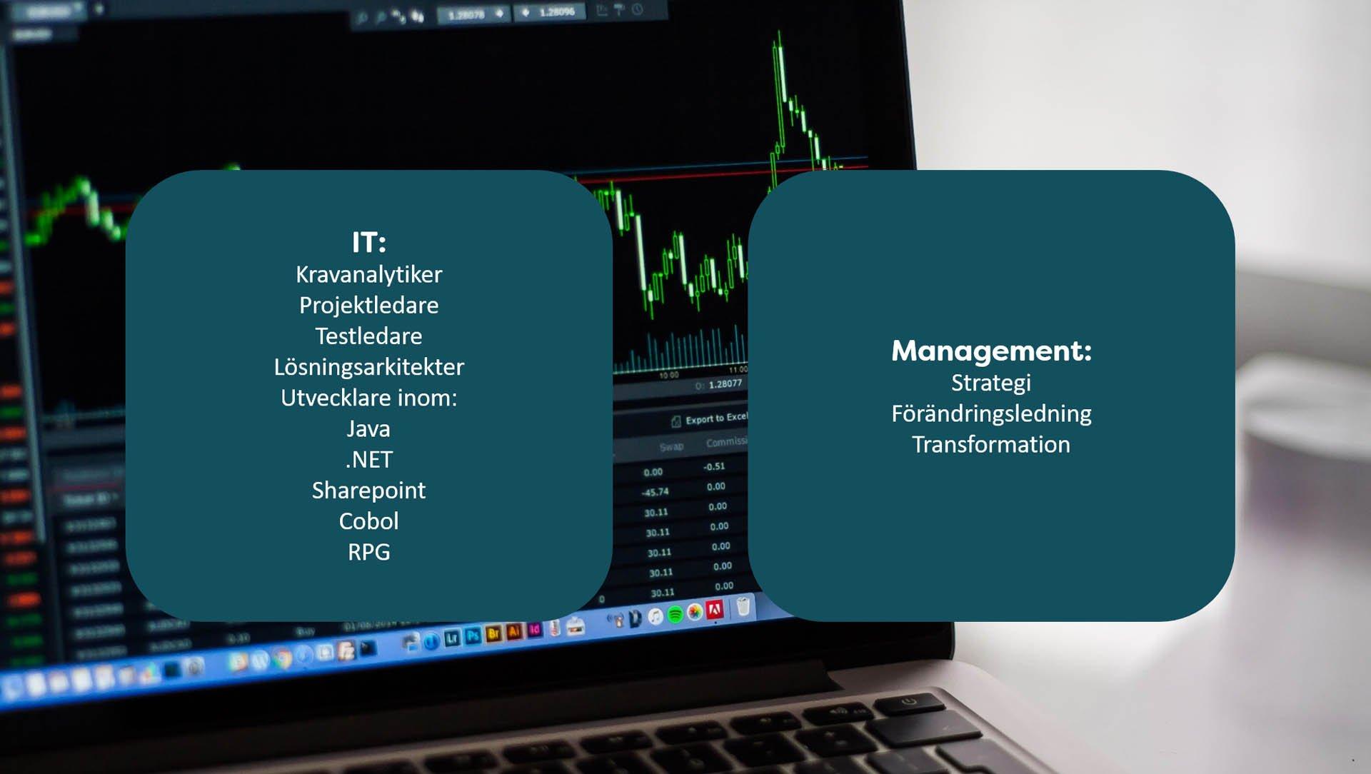 Konsulter-i-vårt-nätverk-management-kravanalytiker-A-Society